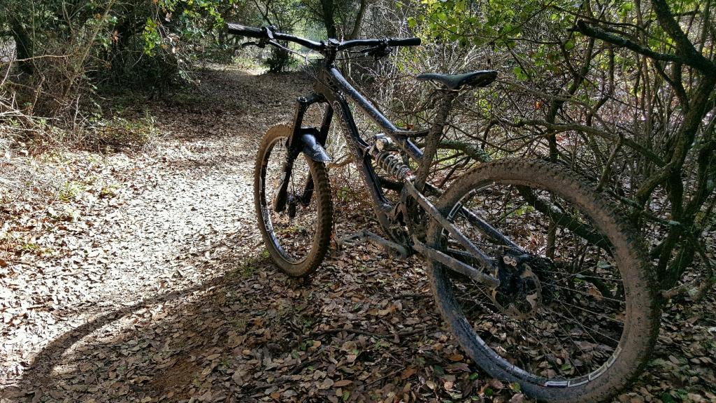 2016 Canfield Balance Trail Photo Thread-20170129_124747_resized_2.jpg