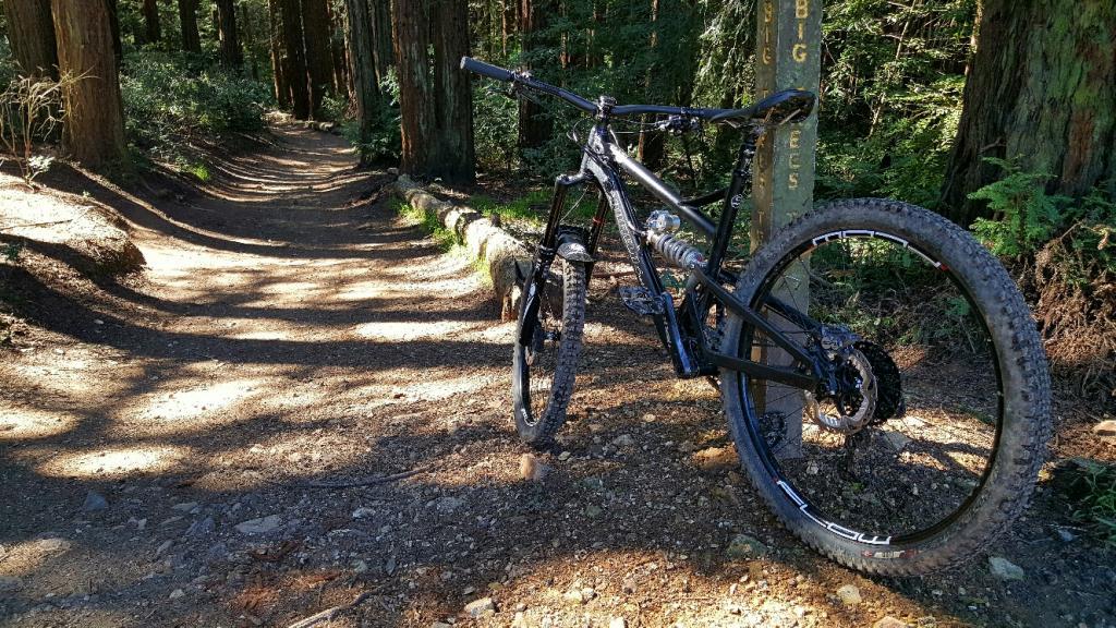 2016 Canfield Balance Trail Photo Thread-20170312_105927_resized_1.jpg