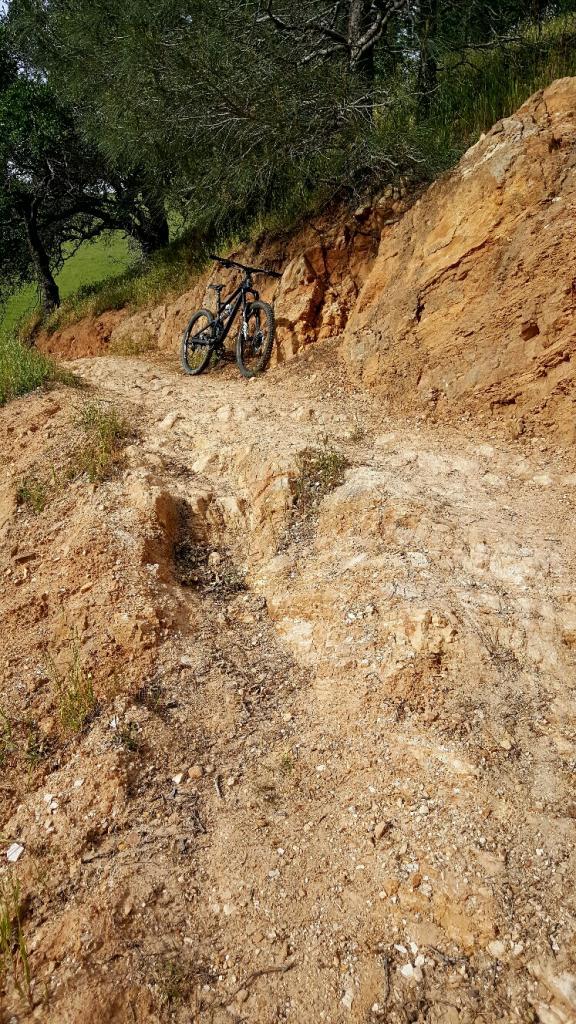 2016 Canfield Balance Trail Photo Thread-20170415_172523_resized.jpg
