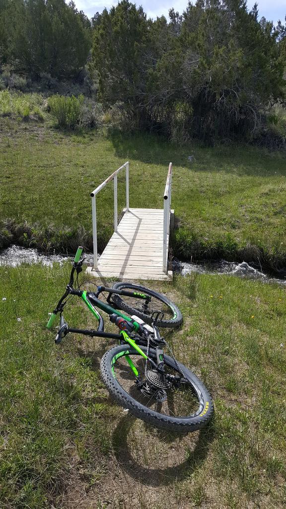 bike +  bridge pics-20170531_094026.jpg