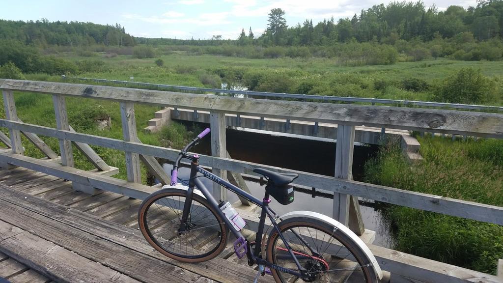 bike +  bridge pics-20170701_171834-medium-.jpg