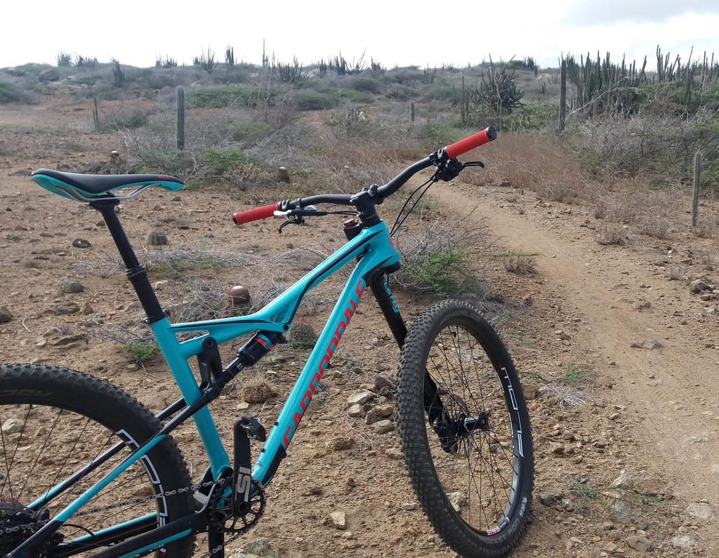 Post Pictures of your 27.5/ 650B Bike-20170715_091556.jpg