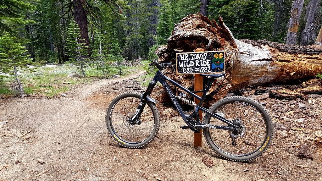 2016 Canfield Balance Trail Photo Thread-20170729_133930_resized_2.jpg