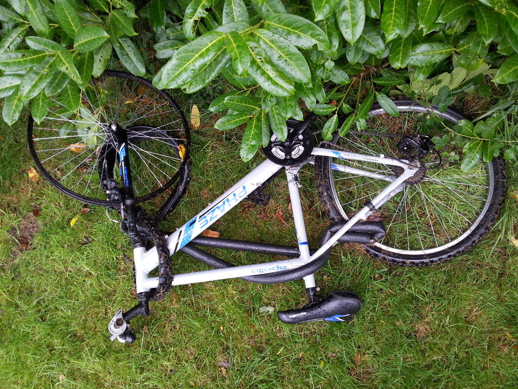 Sad Bikes-20170903_164612.jpg