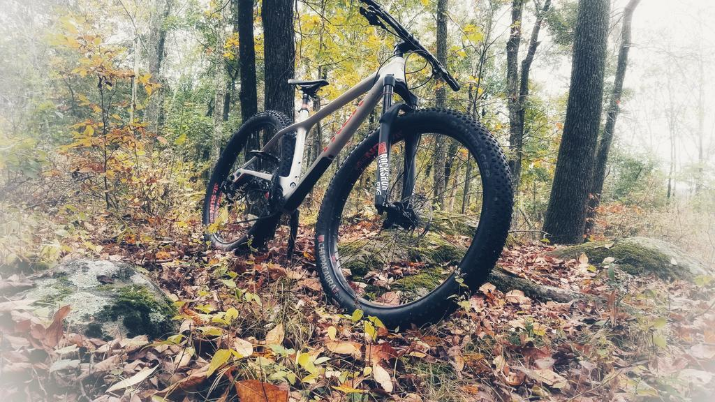 Post Pictures of your 29er-20171015_095447-02.jpg