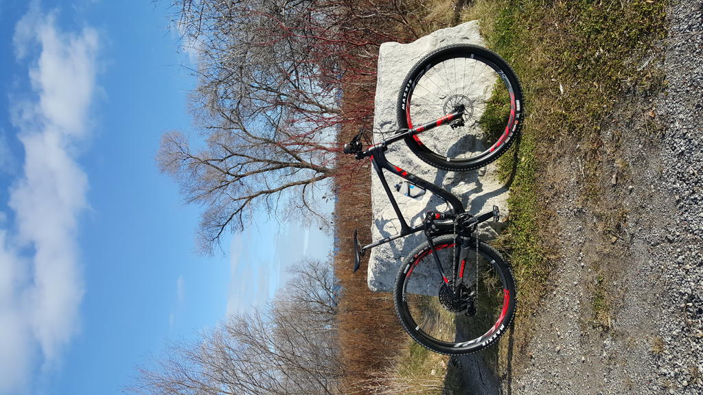 Post Pictures of your 29er-20171201_134749.jpg
