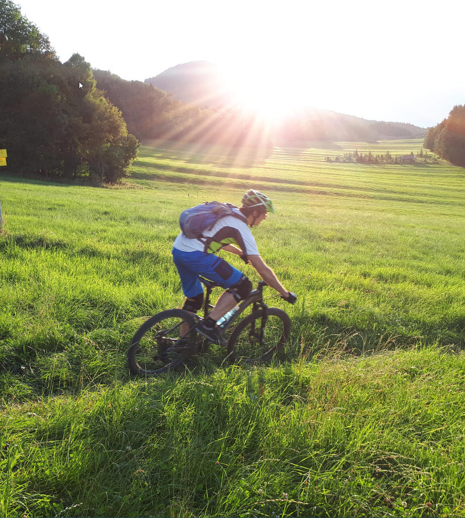 New innovative suspension from Tantrum Cycles. Any thoughts...-2018-08-09hochplatte.jpg