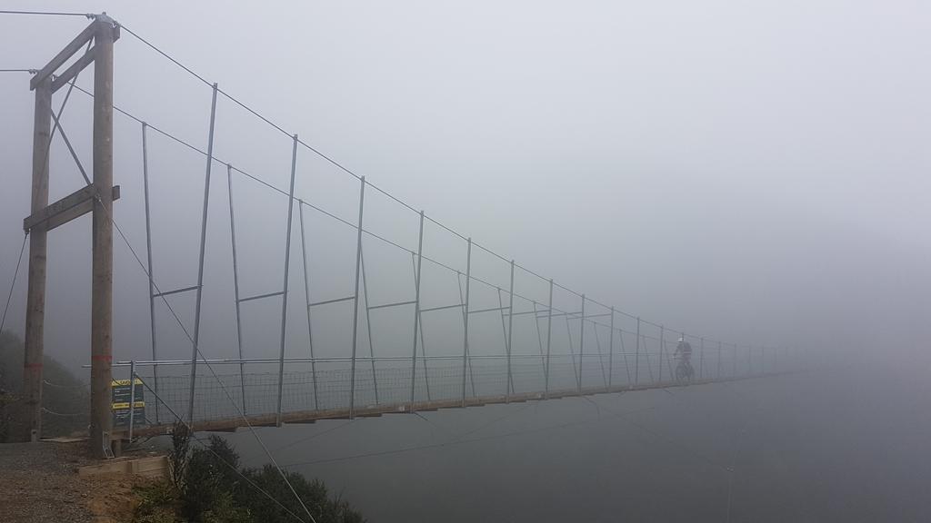 bike +  bridge pics-20180110_102536.jpg