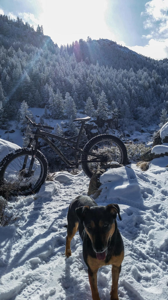 Who is riding Fat all year?  Rigid, Front or Full Suspension?-20180210_151200.jpg