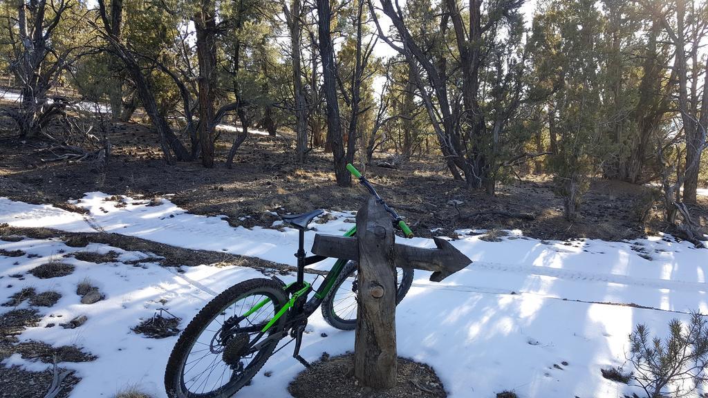 Bike + trail marker pics-20180217_155450.jpg