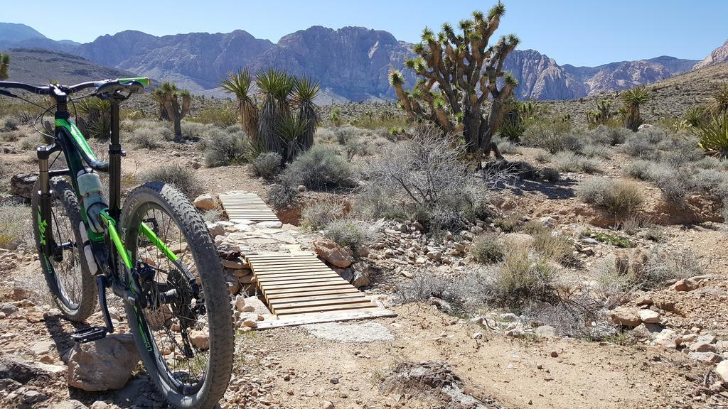 bike +  bridge pics-20180324_135739.jpg