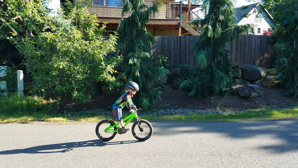 Vitus 16 for a 4 year old-20180512_175450.jpg