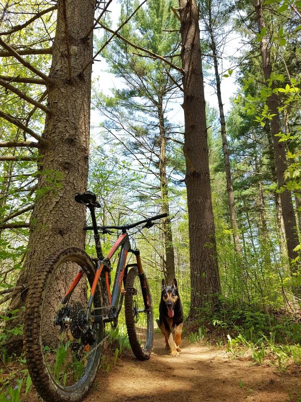 Local Trail Rides-20180518_121611_resized_custom_.jpg