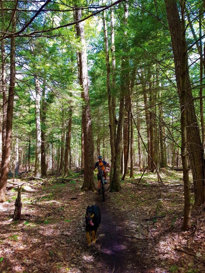 Local Trail Rides-20180521_111650_resized_custom_.jpg