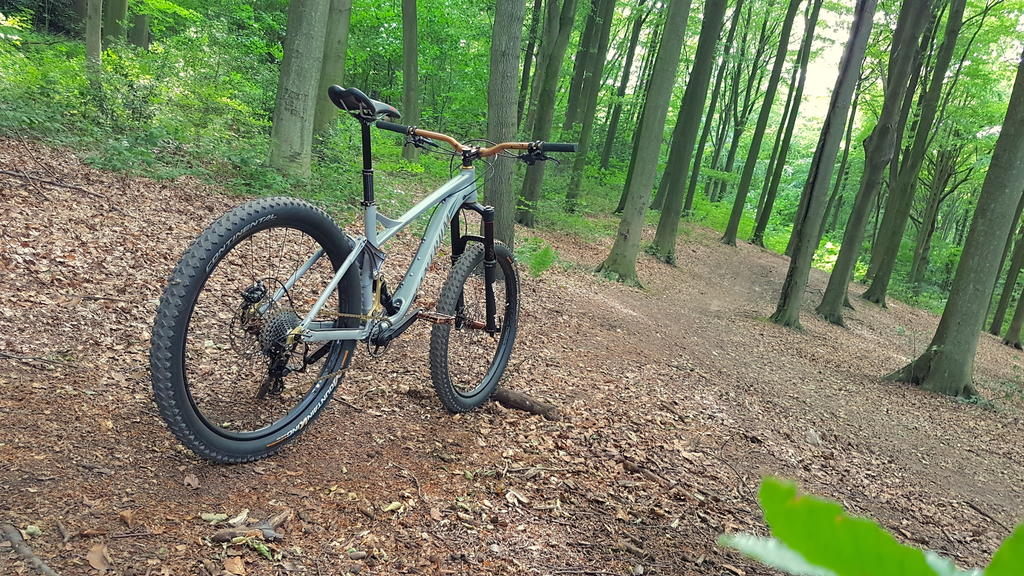New innovative suspension from Tantrum Cycles. Any thoughts...-20180701_164953-copy.jpg