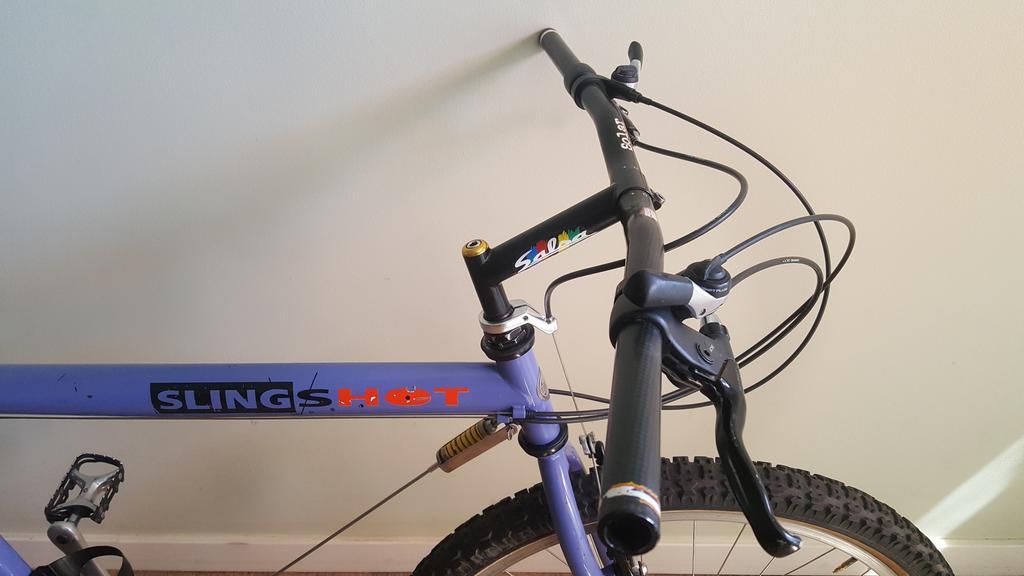 Official Slingshot Bikes Thread-20180829_134130_resized.jpg