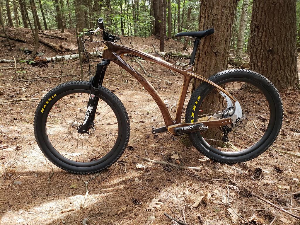 New project: Laminated wood mountain bike-20180909_125806-xl.jpg