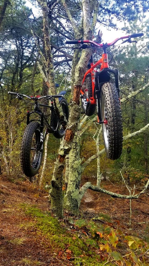 Daily fatbike pic thread-20181029_001457.jpg