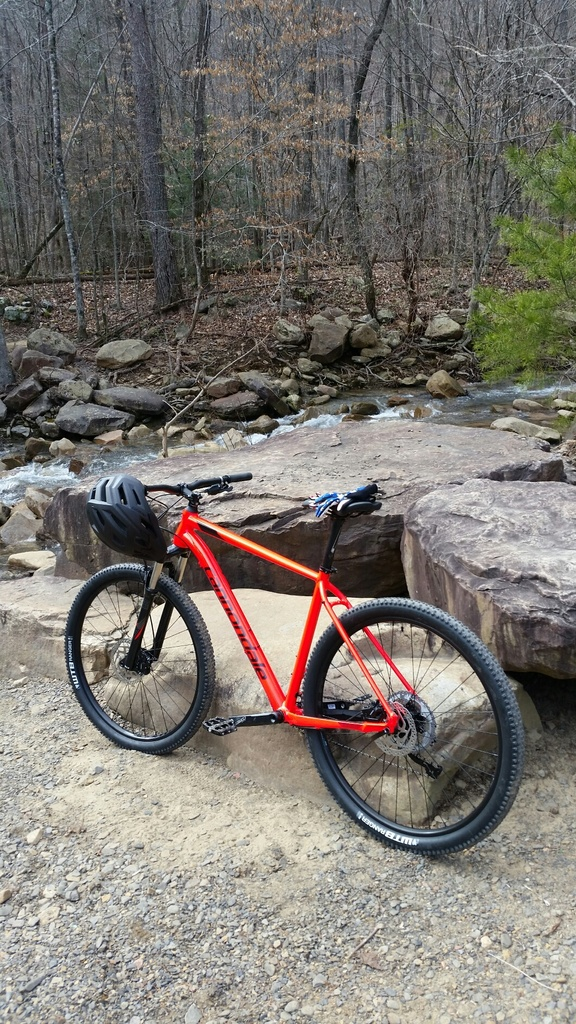 did you ride today?-2019-02-02-09.25.34.jpg