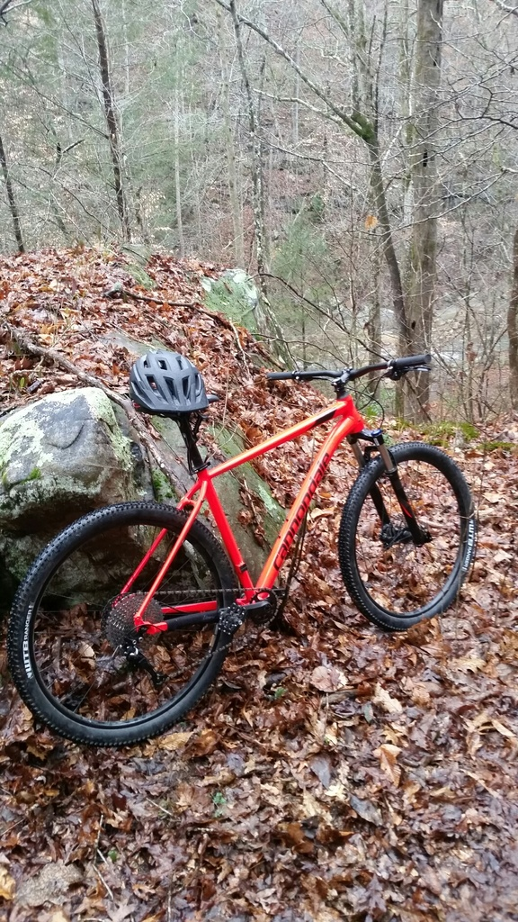 did you ride today?-2019-02-06-17.44.22.jpg