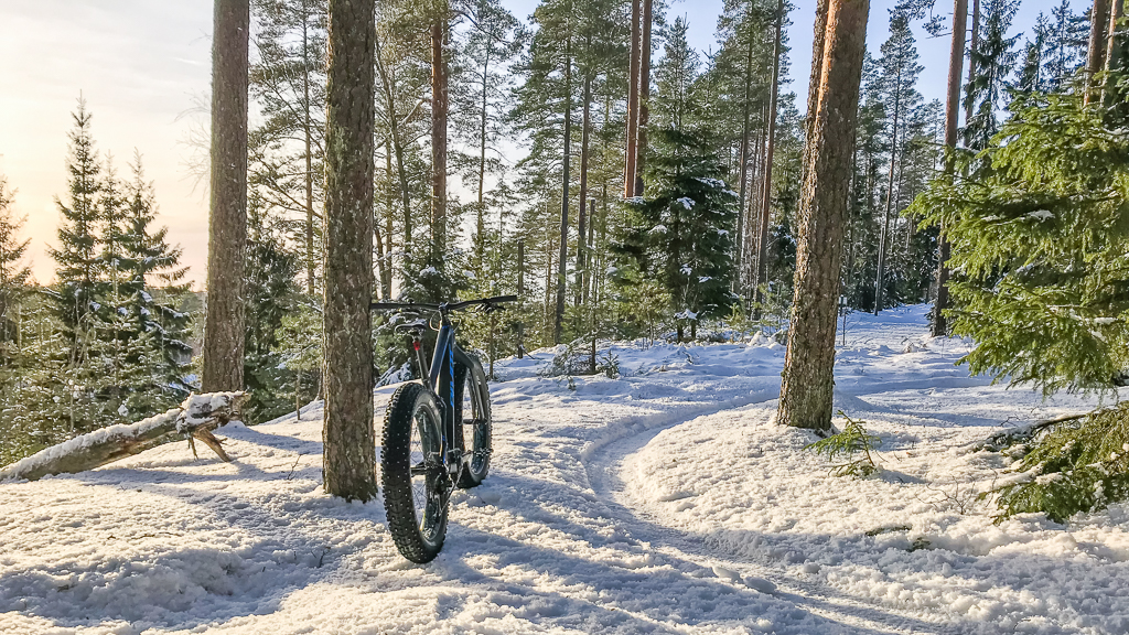 Snow and ice riding picture thread.-20190112-0016.jpg