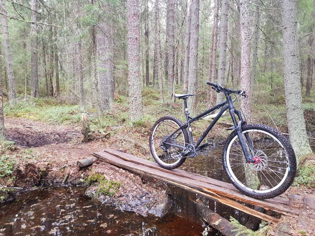 The All Mountain Hardtail Thread. Post up yours.-20190507_104735.jpg