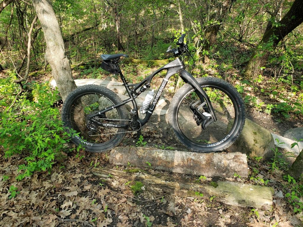 Carbon fat bike feedback-20190525_185628_resized.jpg