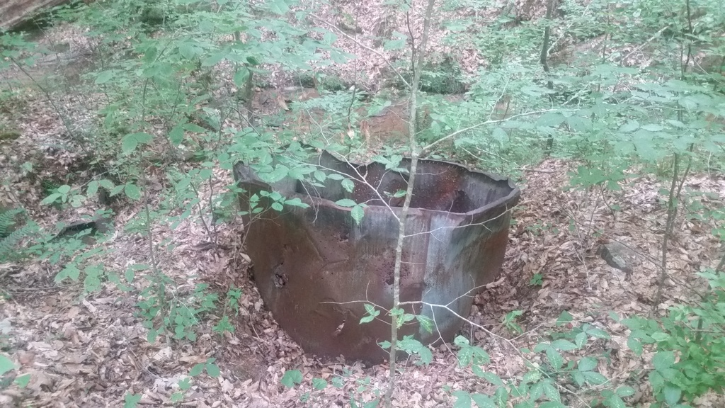 Allatoona Creek trails-20190604_114822.jpg