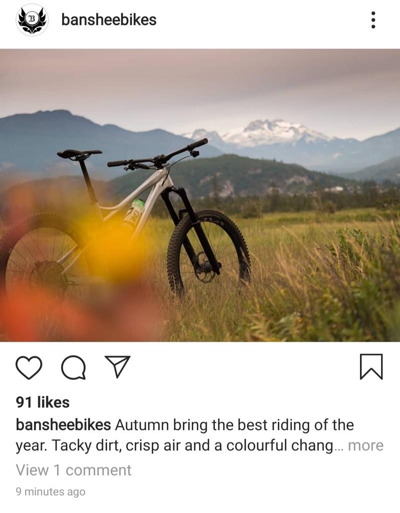 2020 Banshee Rune???-20190912_105411.jpg