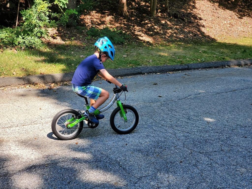 "20"" bike rec 0 top limit - best options?-20190922_123448.jpg"