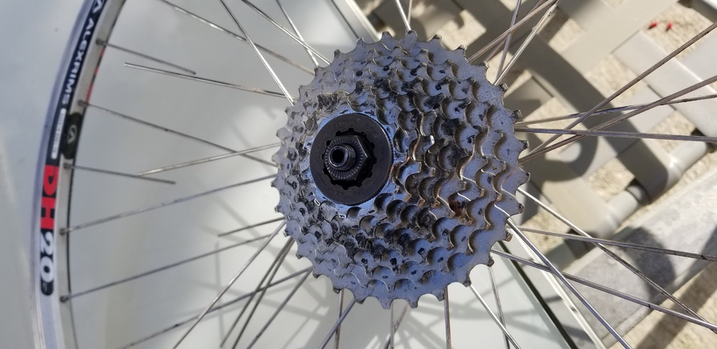 Stainless steel spokes busted with corrosion!-20190924_170529.jpg