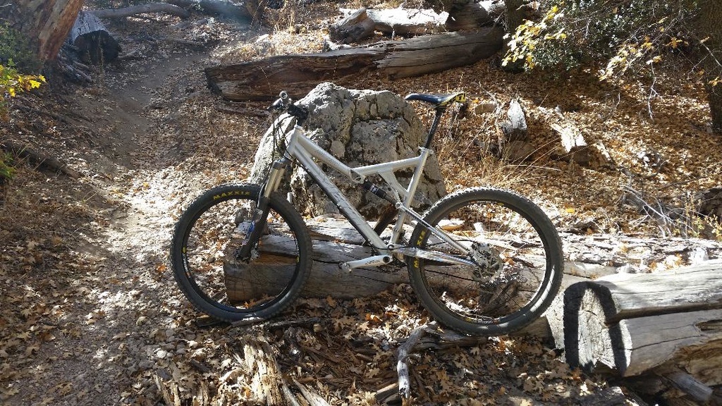 26ers over 10 years old-20191107_110428.jpg