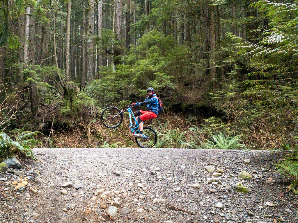did you ride today?-2020-01-01-fromme-lewis-4.jpg