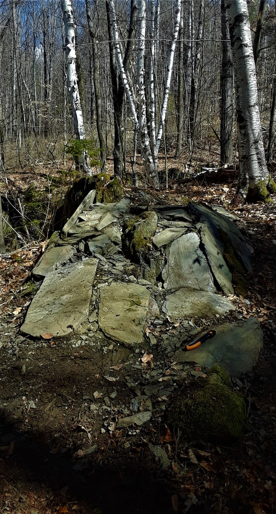 Rock...-20200401_120128.jpg