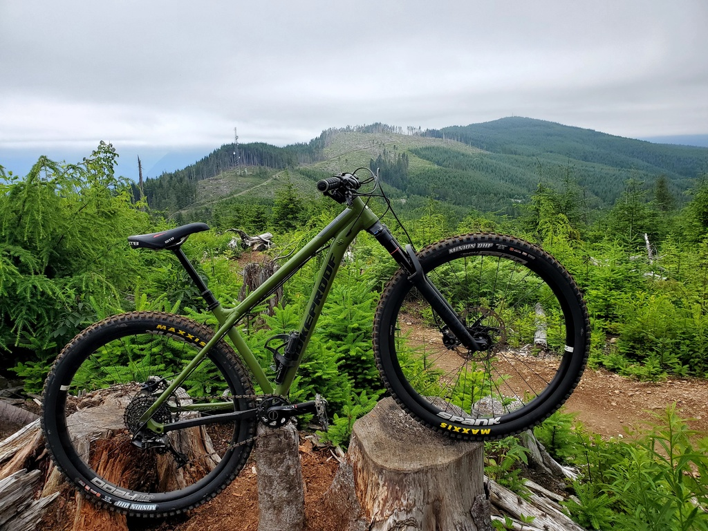 The All Mountain Hardtail Thread. Post up yours.-20200711_165259.jpg