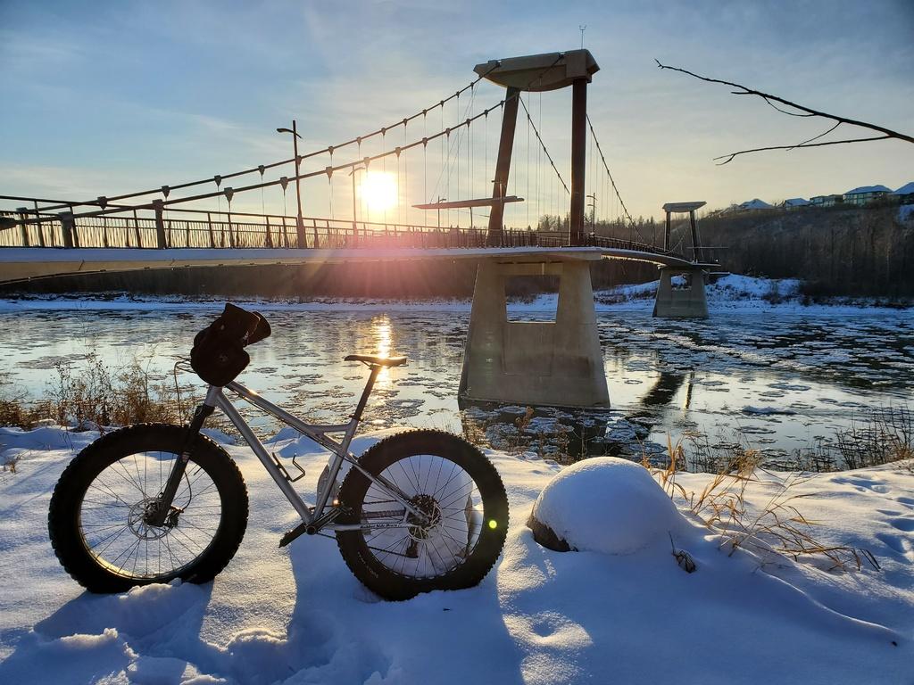 "RSD Bikes ""The Mayor""-20201112_153931.jpg"
