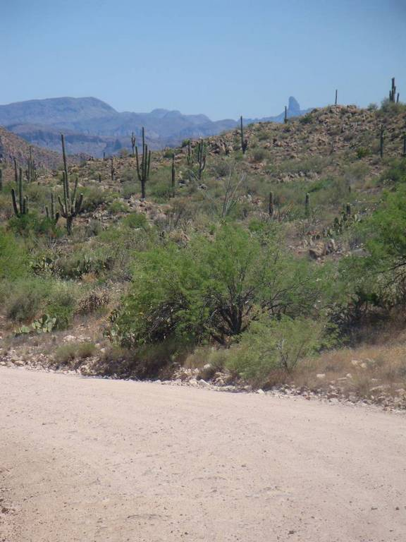 Four Peaks on a hot spring day-21_weavers.jpg