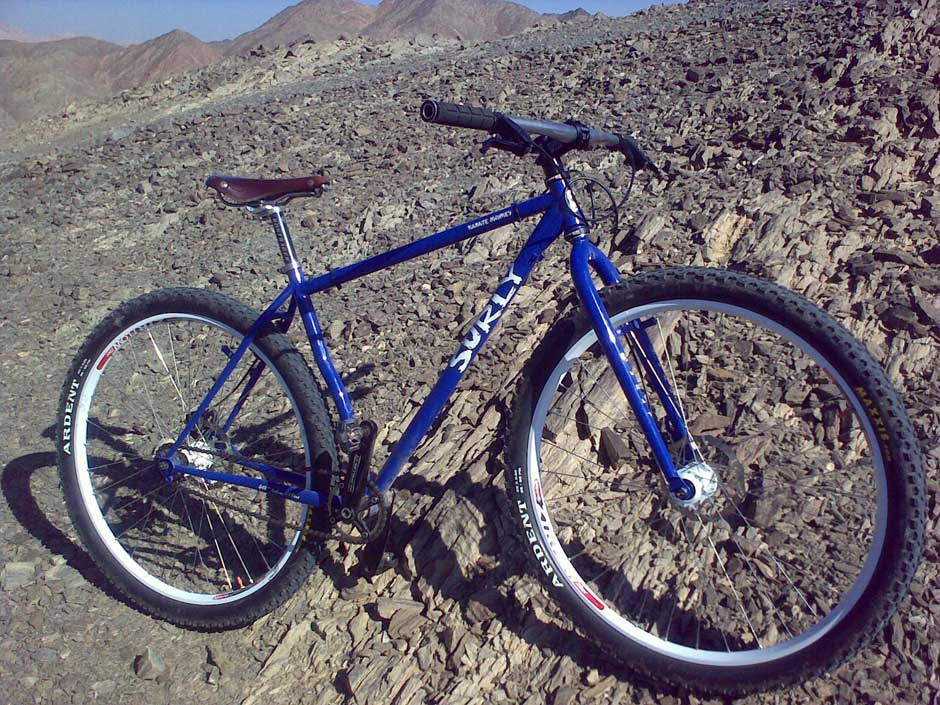 Post pics of your FULLY RIGID SS 29er-22012010004_web.jpg