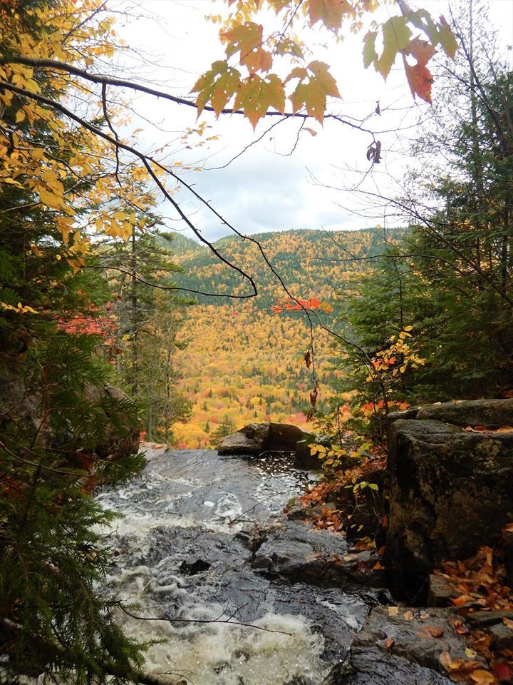 Bridges of Eastern Canada-22308714_1997167650527676_1229623575940144138_n.jpg