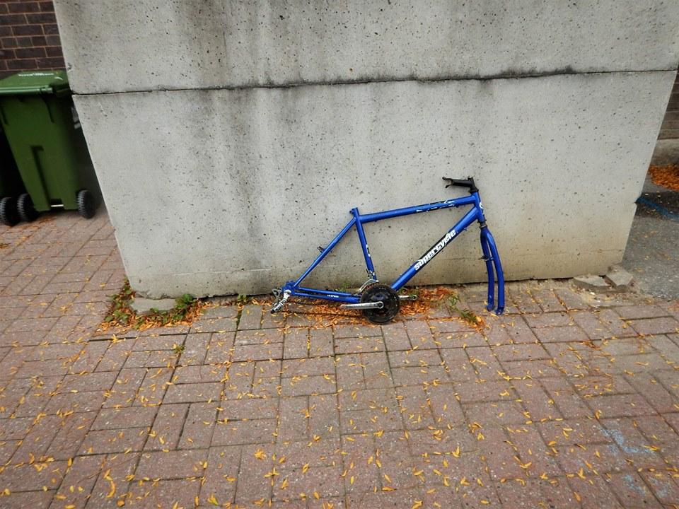 Sad Bikes-22448479_1999367236974384_1829485983834414560_n.jpg