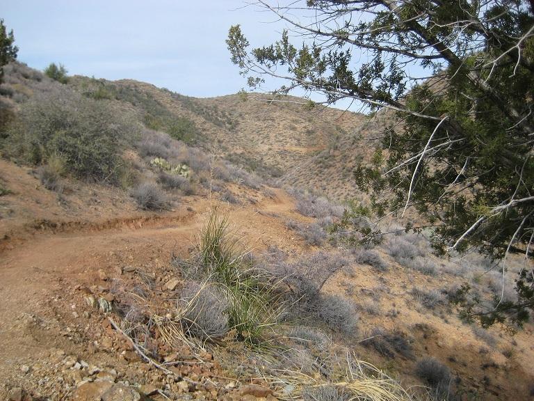 Black Canyon Trail AZ...New Stuff-224small.jpg