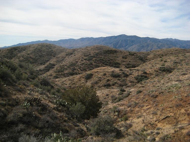 Black Canyon Trail AZ...New Stuff-229small.jpg
