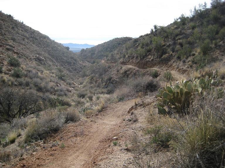 Black Canyon Trail AZ...New Stuff-230small.jpg