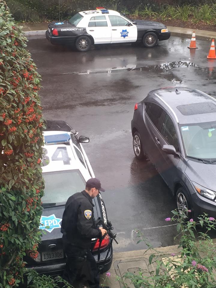 The San Francisco cougar-23376124_10154968066482231_8103689494478423228_n.jpg