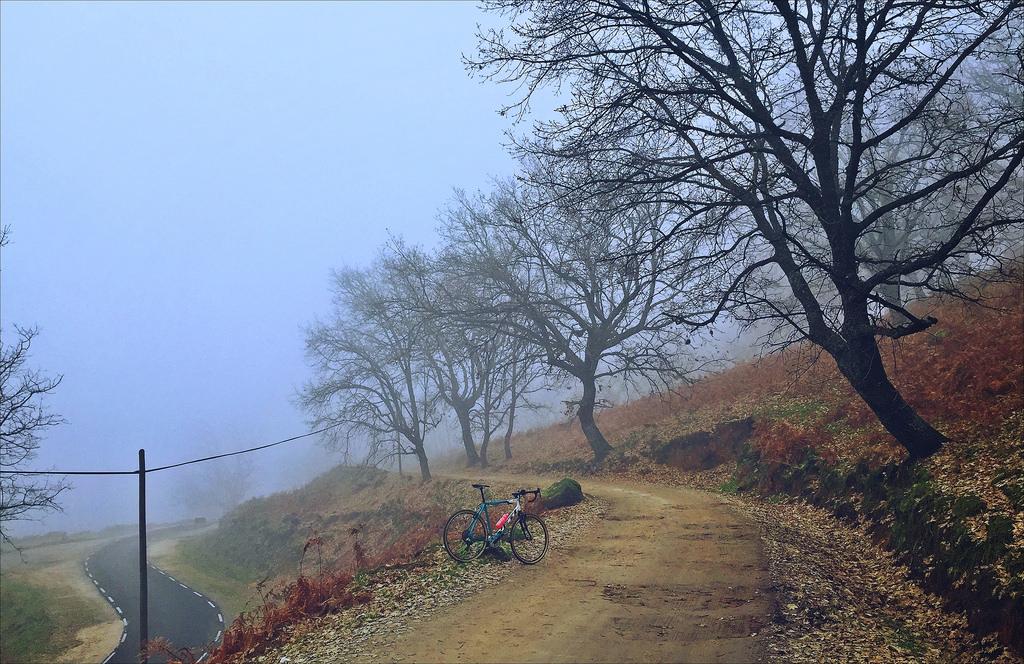 Cross Bikes on Singletrack - Post Your Photos-23958360684_05903a68c8_b.jpg