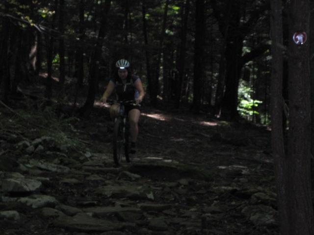 All Our Bikes-23feb-038.jpg