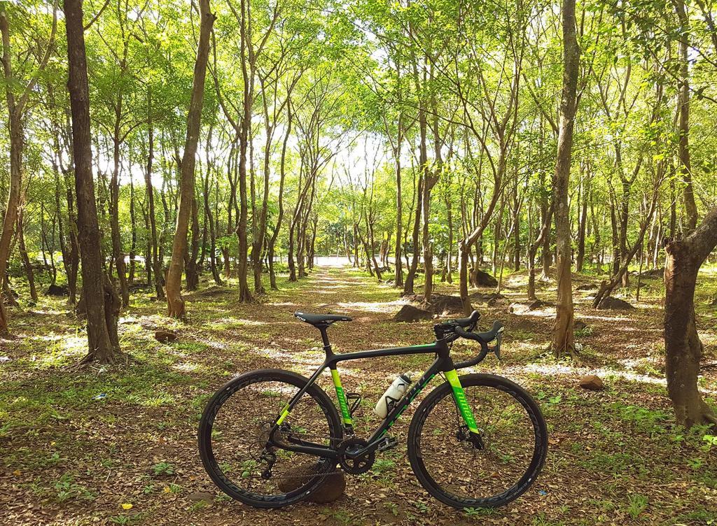 Post your 'cross bike-24173501_10155324153186492_3409002474177453627_o.jpg
