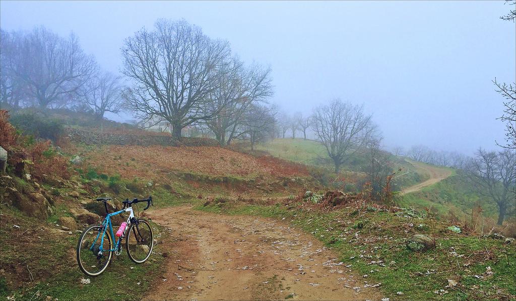 Cross Bikes on Singletrack - Post Your Photos-24503559751_1651f8408a_b.jpg