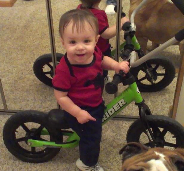 Kids bike gallery-261379_562501420435554_754951270_n.jpg