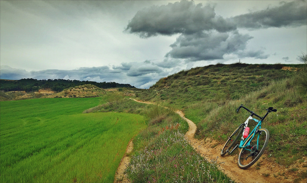Cross Bikes on Singletrack - Post Your Photos-26288702371_428b7b6956_b.jpg